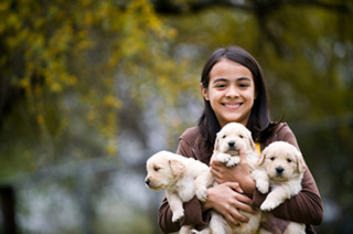 Girl with puppies